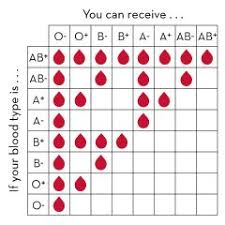 Universal Blood Type Chart Why Can A Type O Person Donate Blood To All Other Blood