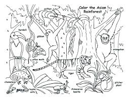 Jungle Coloring Pages Free Printable Animals Coloring Pages Jungle