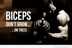 biceps bodybuilding quote image and saying