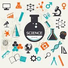 elementary students also work on independent study and service projects at the interate level a number of diffe strategies are used to meet the