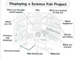 Project Board Template Science Fair Projects Presentation