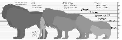 Dire Wolf Size Chart General Dire Wolf Size Chart In 2019 Dire Wolf Size Dire