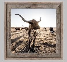 longhorn cattle framed or unframed print ranch photo barnwood rustic wall decor cattle wall art western wall art free shipping by  on framed western wall art with longhorn cattle framed or unframed print ranch photo barnwood