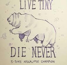 tardigrade actual size 34 best water bears tardigrades images on pinterest tardigrade
