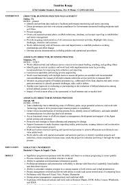 Process Improvement Resume Examples Director Business Process Resume Samples Velvet Jobs 14