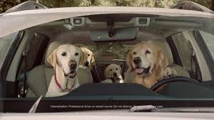 Dog Commercial Subaru Tested Car Youtube I Wash 4qAcF