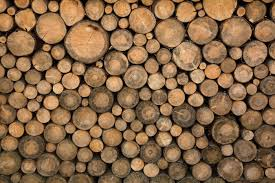 wall of stacked wood logs vinyl wall mural istaging
