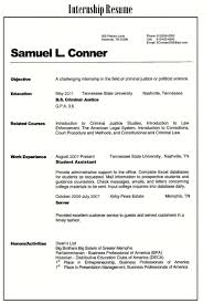 It Resume Examples basic resumes nicetobeatyoutk 95