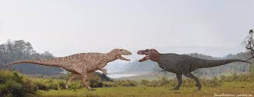 carcharodontosaurus size pdbs2f8 tyrannosaurus vs carcharodontosaurus dinosaurs forum