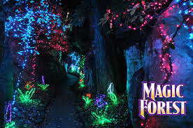 rock city enchanted garden of light pathway magic forest