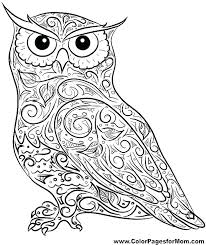 owl coloring pages for adults. Simple Owl Hard Owl Coloring Pages Printable  Adults Remarkable  With Owl Coloring Pages For Adults O