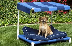 how to build an outdoor dog bed