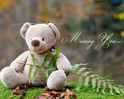 cute bear wallpaper desktop cute teddy bear wallpapers ①