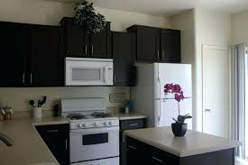 painting kitchen cabinets black creative crucial painting oak kitchen cabinets black sweet tips of espresso painted painting kitchen cabinets