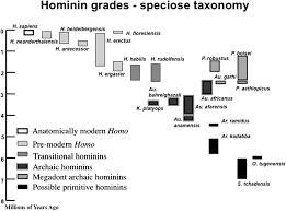 Hominin Chart Reconstructing Human Evolution Achievements Challenges