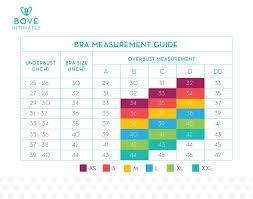 Bebe Intimates Size Chart Jbm