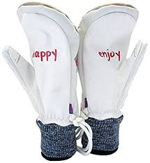 Amazon.co.jp: Audry Jones (Audrey Jones) Snowboard Gloves Earth + H ☆ P  Happy, TANAKA produced Items Hipora Materials AJ14 – EHP – 03 Beige Beige  is going Skull X L): Sports