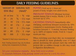 Zignature Feeding Chart Zignature Kangaroo Limited Ingredient Formula Grain Free Dry Dog Food 13 5 Lb Bag