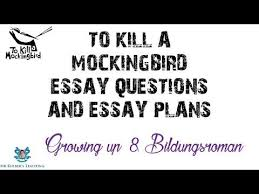 cool to kill a mockingbird justice quotes kayak  gallery