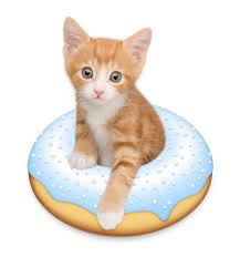 doughnut kitten by tania hennessy