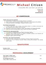 Executive Resume Writers Public Service Senior Executive Resume Public Service
