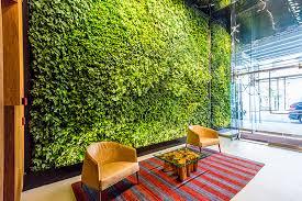 Indoor Living Wall Discover Interior Living Walls