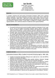 Profile For Resume Examples Profile Cv Examples Savebtsaco 6