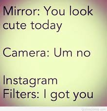Selfie Quotes For Instagram Beauteous Funny Selfie Quotes For Instagram Dogs Cuteness Daily Quotes