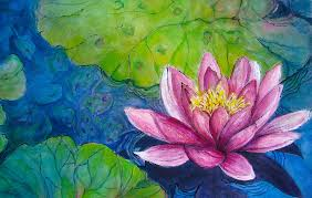 lily painting water lily no 4 by myra evans