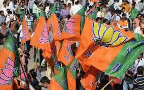 பா.ஜனதா கூட்டணி அரசு 3-2 மெஜாரிட்டியை பெறும்