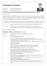 Resume Samples For Banking Jobs resume It Job Resume Sample 9
