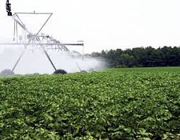 Irrigation Management Irrigation Systems Overview Cotton