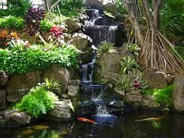 koi pond lighting ideas. interesting pond pond with koi and waterfall and koi pond lighting ideas