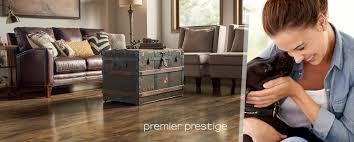 decor premier prestige 5627 windswept yew dark lq