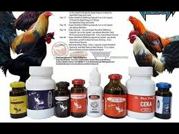 Dr Blues 21 Days Conditioning Methods For Stags And Cocks