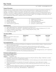 professional computer systems analyst templates to showcase your resume templates computer systems analyst