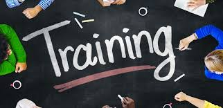 Looking For Examples Of Training Plans For Employees