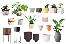 where to plant pots in singapore