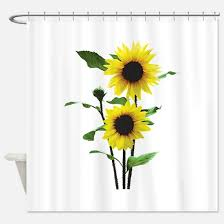Sunflowers Tall and Short Shower Curtain