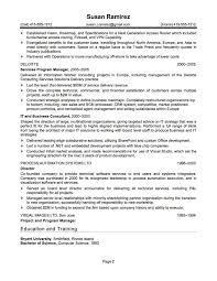 Ethics Essay Free Business Asset Analyst Resume Professional
