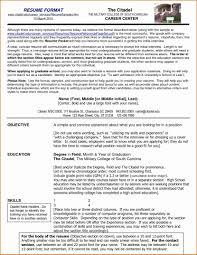 Popular Resume Styles The Most Popular Resume Format Design Template Within Professional 17