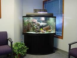 office fish. Fish Aquarium Gallery Of Aquatic Designs | Maintenance Grand Forks, ND Office