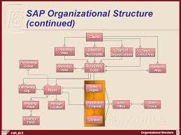 Sap Sd Organizational Structure Flow Chart Chapter 3 Organizational Structure Ppt Video Online Download