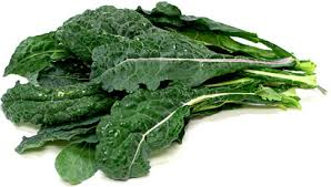 Dinosaur Kale Information and Facts