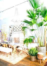 fake house trees indoor large palm tree inside bohemian dining room uk plants in living pa