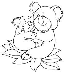 Koala Beertjes Kleurplaat Jouwkleurplaten