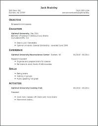 Teen Sample Resume Classy Sample Resume First Job Sample Professional Resume