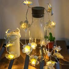 delights lighting. Tropical Nights Floral Delights, Frangipani LED String Lights - Garden Gift Hub Delights Lighting