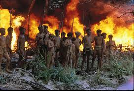 lord of the flies rescue actual image o lord of the flies  a host of resources can be found in this learning that will walk you through the steps of a unit on the novel lord of the flies by william golding