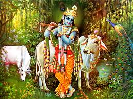 Lord Krishna Images Hd Krishna Photos Free Download